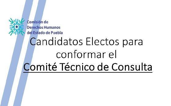 Candidatos Electos para conformar el Comité Técnico…